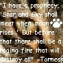 prophecy1